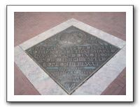 IMG013 and horses with paving