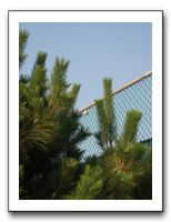 IMG006 Game, set and oh dear